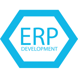 erp-implementation-and-development